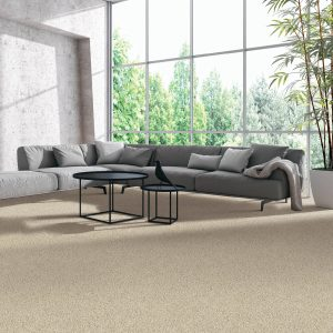 Natural Splendor carpet | Vic's Carpet & Flooring