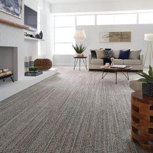 Jura grey carpet| Vic's Carpet & Flooring